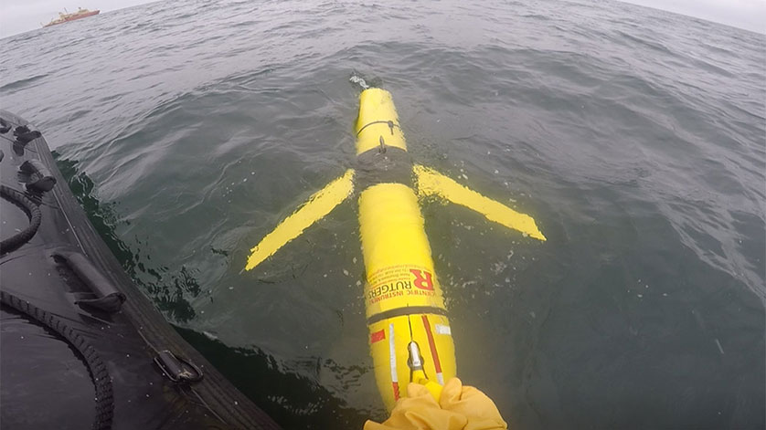 Comprehensive Glider-Based Ecosystem Study in Terra Nova Bay, Ross Sea