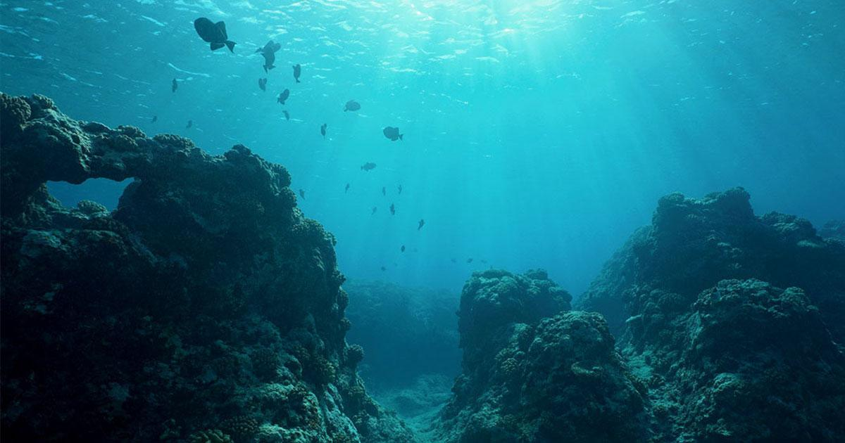 Calls on Countries to Change Course on Deep Sea Mining