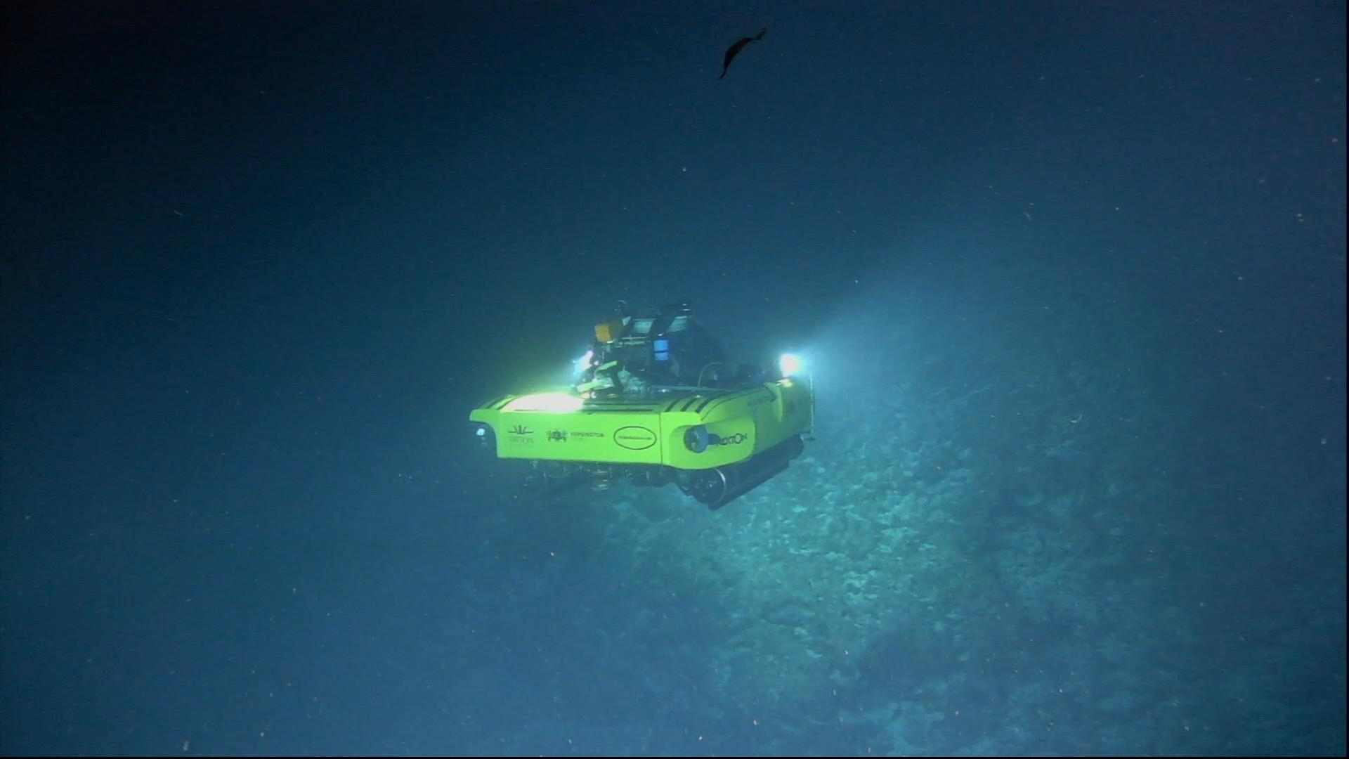 2 Submersible equipped with Teledyne Bowtech lights and cameras deep dive