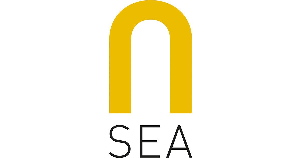 New CEO for Subsea IMR Service Provider, N-SEA