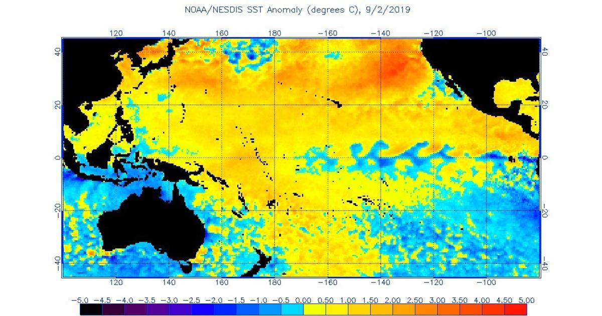 Picture of: Return Of The Blob Researchers Monitor Marine Heatwave Off West Coast Of North America Science Technology News