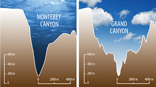 2 canyon comparision
