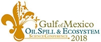 Gulf of Mexico Oil Spill & Ecosystem
