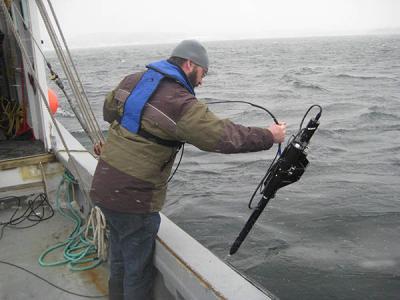 Ocean Carbon Studies